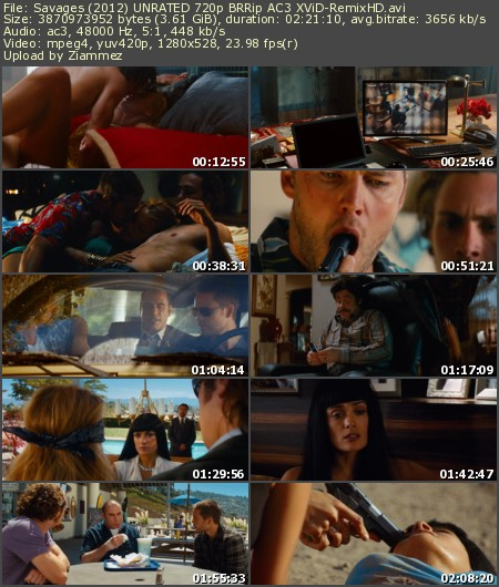 Savages (2012) UNRATED 720p BRRip AC3 XViD-RemixHD