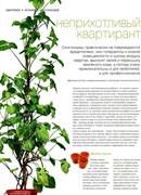 Садовник (№3, март / 2013)
