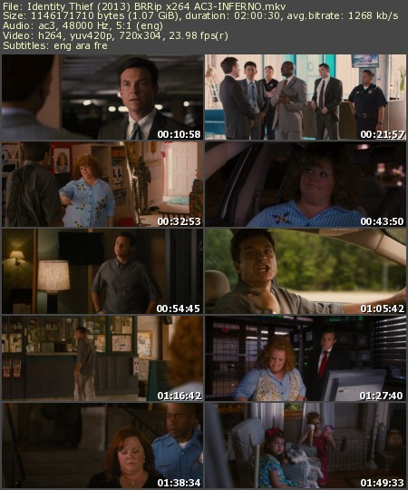 Identity Thief (2013) BRRip x264 AC3-INFERNO