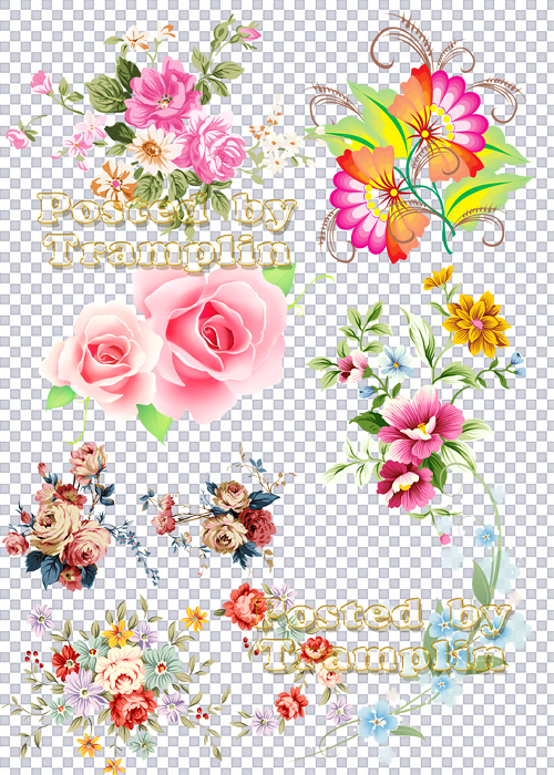 Клипарт в Png - Цветы