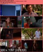 Dexter [S07E06] HDTV XviD-AFG