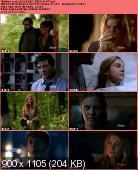 Revolution 2012 [S01E07] HDTV.XviD-AFG