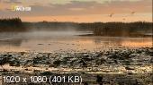 http://i46.fastpic.ru/thumb/2013/0422/9d/bbc1dd734b86a11ca858ac1f9616309d.jpeg