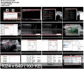 Как узнать и сменить MAC адрес (2013)
