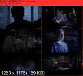 Greys Anatomy [S09E24] HDTV XviD-AFG