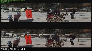 http://i46.fastpic.ru/thumb/2013/0519/45/33a10cc540b4bbc35419069b27bce545.jpeg
