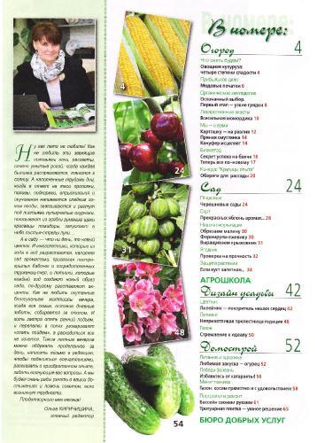 Огородник №6 (июнь 2013)