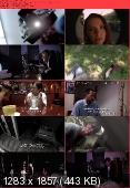 VHS 2 2013 READNFO HDRip XviD-AQOS
