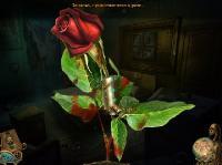 Орден розы (RUS/2013)